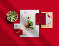 Aznar - Re-branding and Identity Design