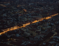 The Veins of Florence