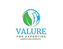 Valure - Brand Identity