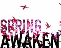 Spring Awakening Album Cover