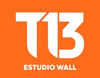 Gráficas Estudio Wall