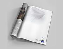 Ad Campaign: Clorox