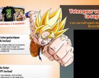 Dragon Ball Z (DirectStar.fr)