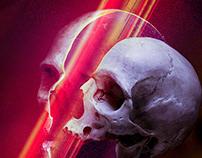 Skull Series #12-21