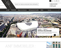 ANF Immobilier (2)