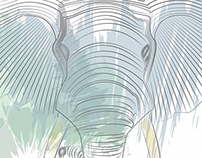 Capa de CD Elefante / Elephant CD Cover