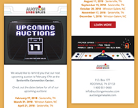 Email Design - Auction Game Sales