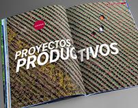 Informe Anual Fundación Coca-Cola 2015