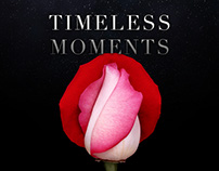 Cartier: Timeless Moments/The Gift