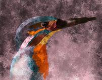 wild bird artistic illustration