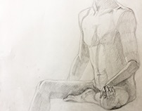 Anatomy final work