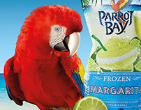 Parrot Bay Frozen  Key Visual