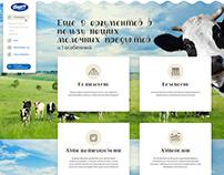 Website Borte Milka / website design / UI/UX