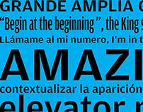 Afiche y especimen tipográfico
