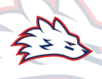 RMIT Flag Football Club - Brand Identity