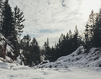 Winter Lands