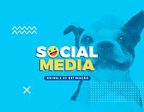 Social Media // Animais de Estimação
