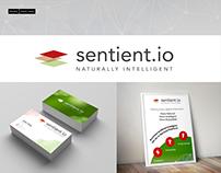 Sentient.io Branding