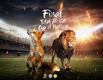 final total africa cup of nations