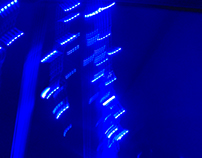 Séries Fotográficas: Blue Light