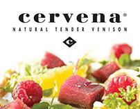 Conceptual Design for Cervena campaign