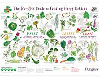Burgess Guide to Feeding Happy Rabbits