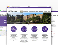 """The Ginger Lab"" responsive website"