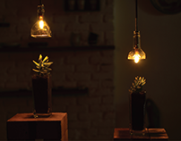 Indoor Lamp and Planters: Upcycling Liqour Bottles