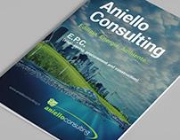Aniello Consulting - Company Profile