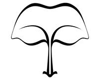 Auranya - branding a real estate vision