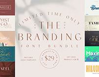 THE BRANDING FONT BUNDLE - 29 FONTS + BONUS