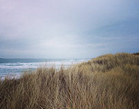 January Dunes