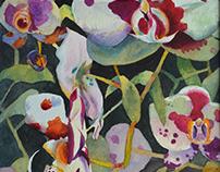 Orchid Impromptus