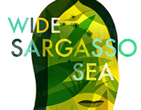 Wide Sargasso Sea (Uncovered Classics)