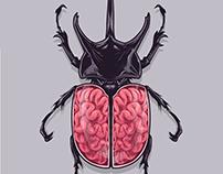 BeetleBrain