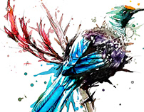 Watercolour Tui