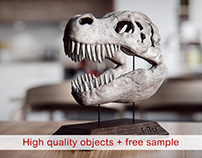 T-Rex skull - 3D model and visualization