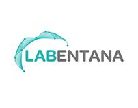 Logo Options - Innovation Lab