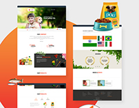 CamlinFS website layout design_2
