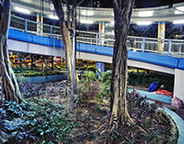 HONGKONG NIGHT LIGHTS