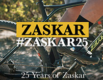 2016 GT Zaskar