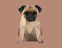 Pug Life.