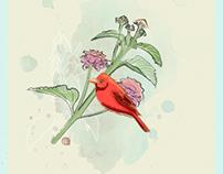 Palma de cera y alas rojas