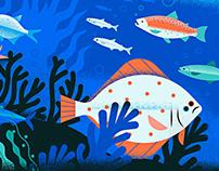 Neptune fishes