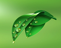 Leaf - Illustration