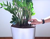 Twig: Plant Health Monitoring Probe