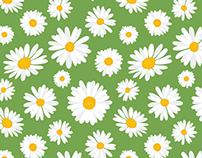 Garden Daisies Repeat Pattern