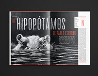Hipopótamos - Editorial Design