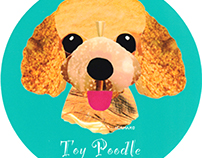 042 | Toy Poodle 2