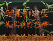 Weave Carrot - Experimental typography